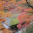 1127-2 京都の窓